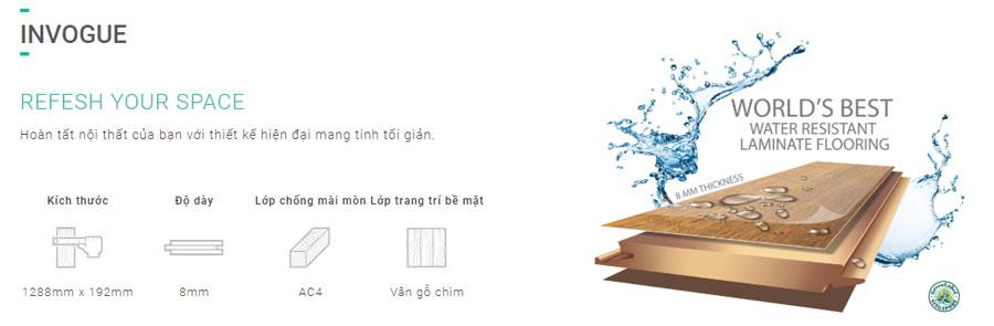 Sàn gỗ Inovar dày 8mm - vân giấy Châu Âu - Ký hiệu IV
