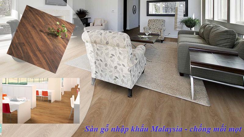 Sàn gỗ Malaysia chống mối mọt